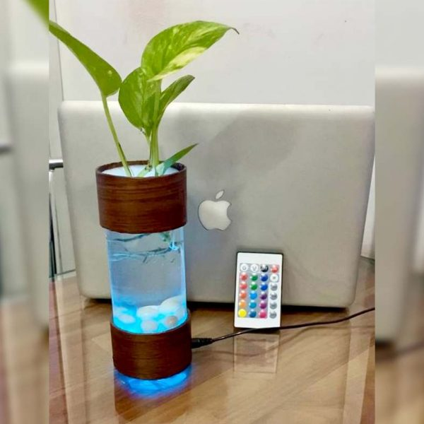 Indoor Planter